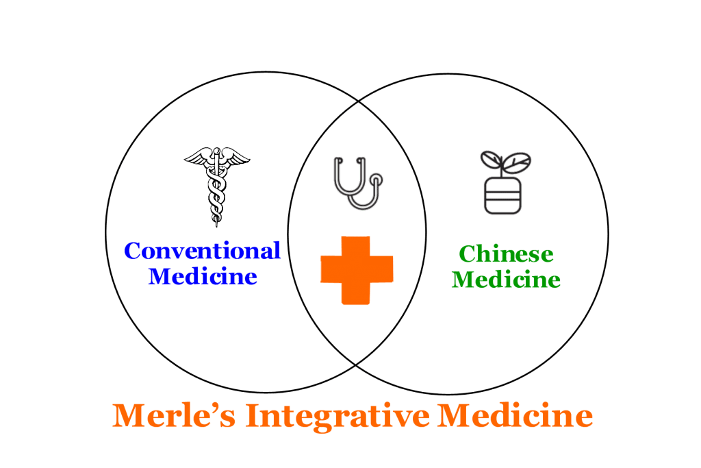 a diagram that shows merle's approch to integrative medicine